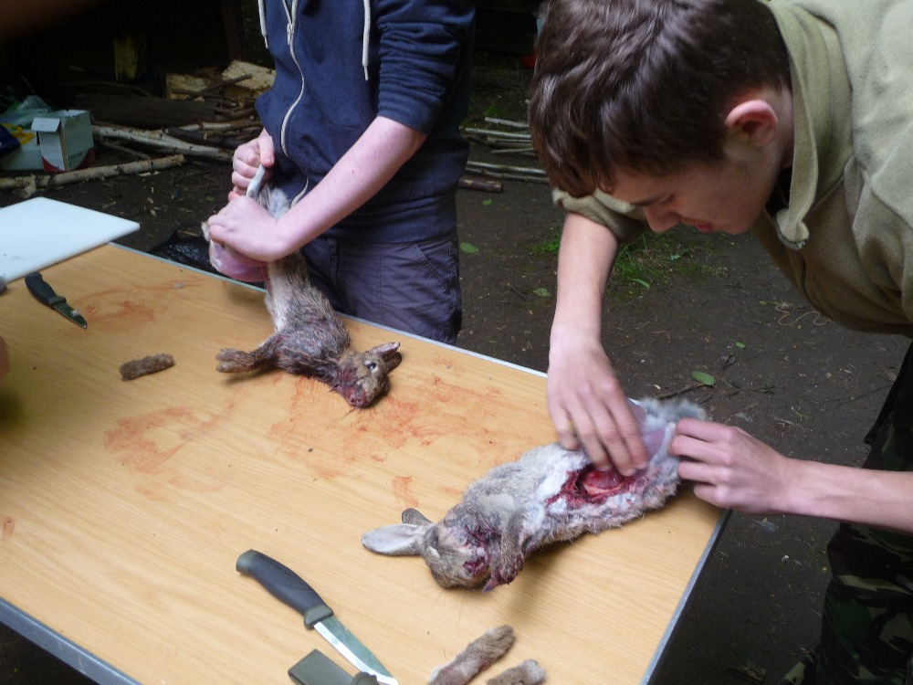 Learning how to skin and cook a rabbit